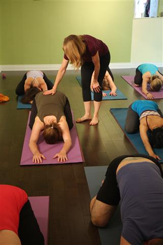 FREE Yoga and FitCamp – Beginner Friendly